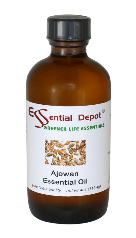 Ajowan Seed Essential Oil - 4 oz.