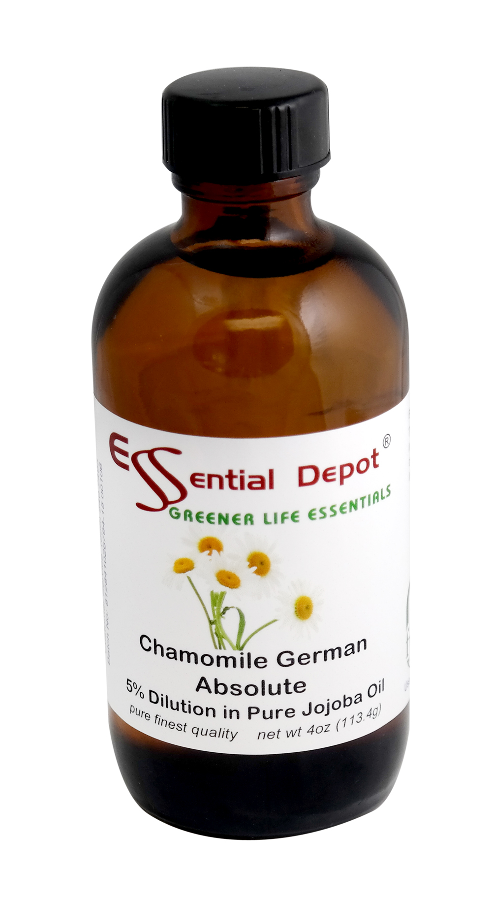Chamomile German Absolute 5% Dilution in Pure Jojoba - 4oz
